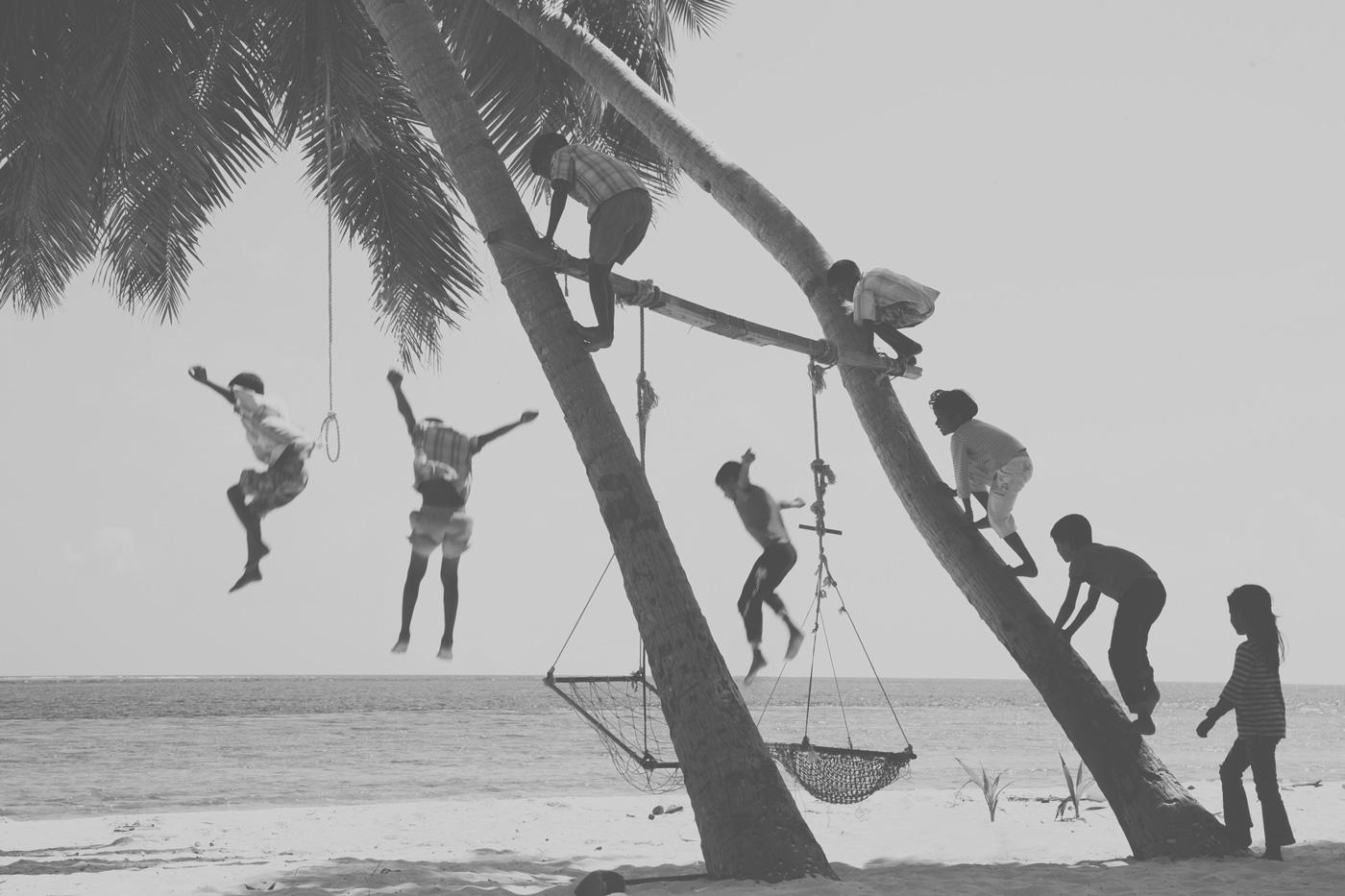 Kinder klettern auf Palme am Strand
